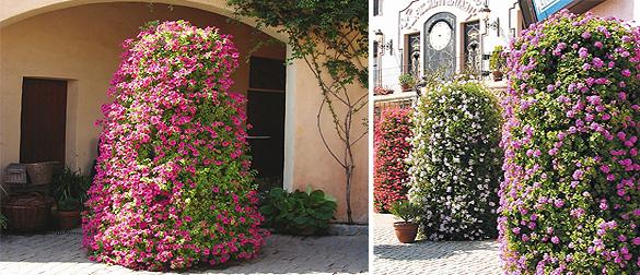 estructuras-florales-garsy
