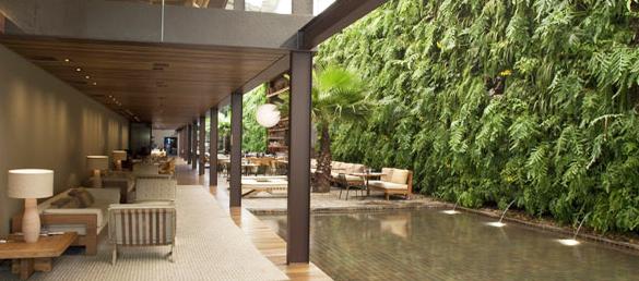 Los jardines verticales o murales