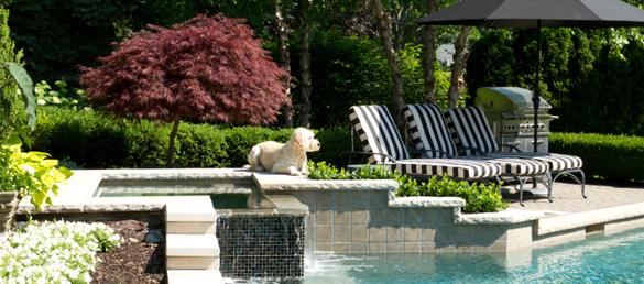 Antes de elegir los exteriores de tu piscina